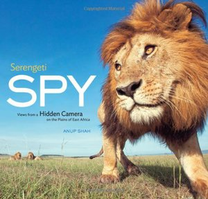 Preview thumbnail for video 'Serengeti Spy: Views from a Hidden Camera on the Plains of East Africa