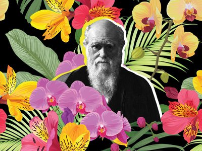 Though Charles Darwin is most famous for his voyage aboard the HMS Beagle and his theory of natural selection, the naturalist was, at heart, a botanist.