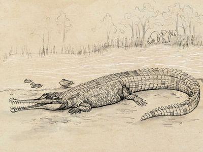 An artist's rendering of Gunggamarandu maunala.