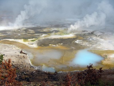 A hydrothermal area called Porcelain Basin in Yellowstone National Park's broader Norris Geyser Basin.