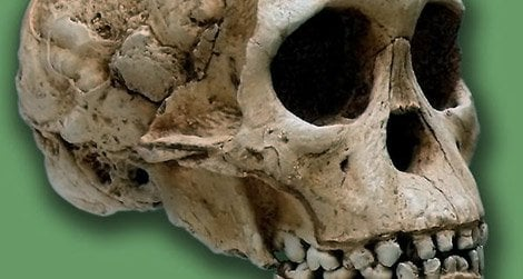 The Taung Child was killed by an eagle about three million years ago.