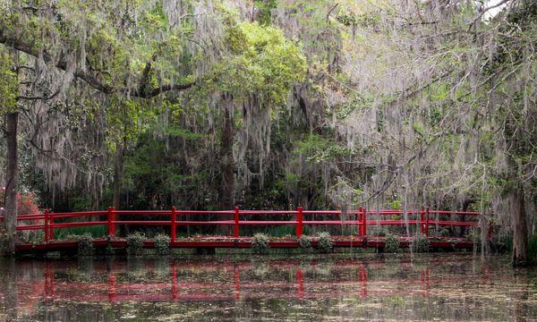 Magnolia Plantation and Gardens, South Carolina thumbnail