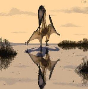 20110520083202Lacusovagus-Witton-Pterosaur-297x300.jpg