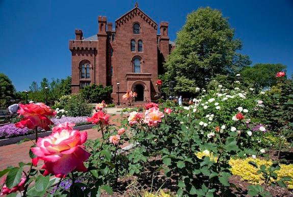 Butterflies, Baseball and Blossoms: Tours for Your Spring Vacation