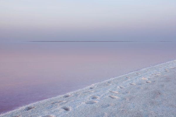 pink water white shore thumbnail