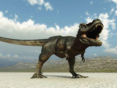 20110520083105trex_dinosaur_tracking.jpg