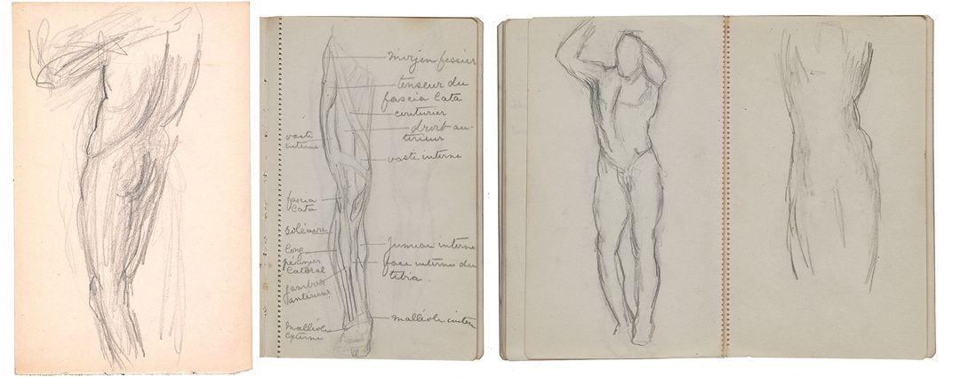 Anatomical sketches by Gertrude Vanderbilt Whitney