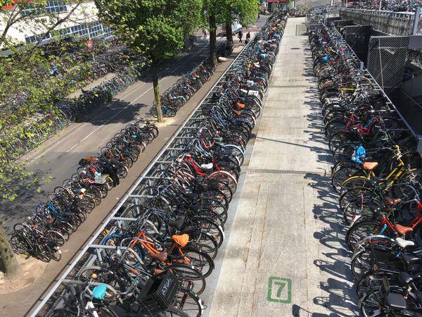 Amsterdam Bicycle Garage thumbnail