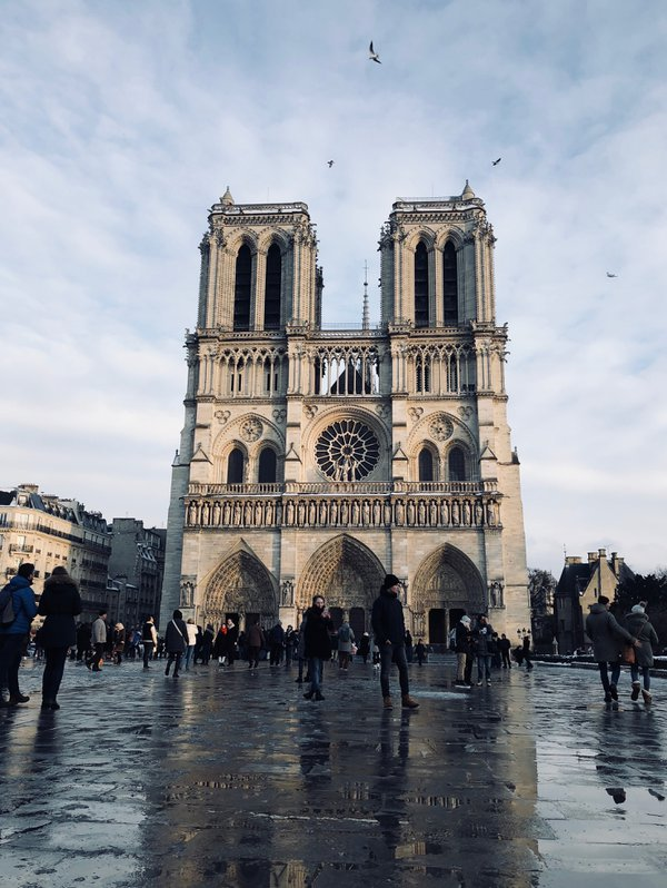 A somber Notre Dame thumbnail