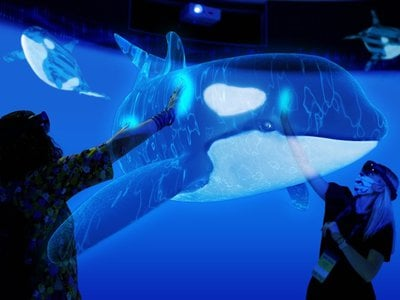 """Two people an augmented-reality experience wear headsets while reaching out to """"touch"""" a holographic killer whale."""