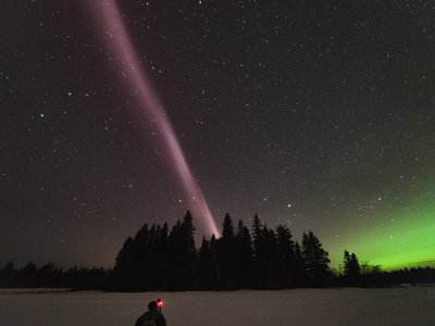A STEVE lights up the night over British Columbia.