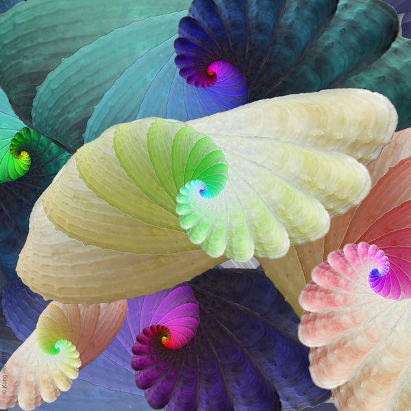 Preening Colors thumbnail
