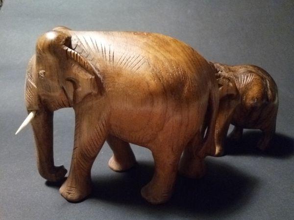 Elephants thumbnail