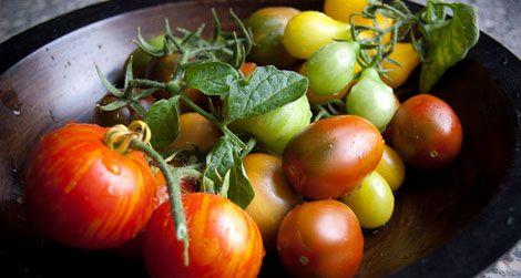 20130220025109tasteless-tomatoes-chemistry-web.jpg