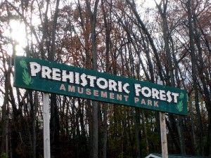 20110520083227Prehistoric-Forest-300x225.jpg