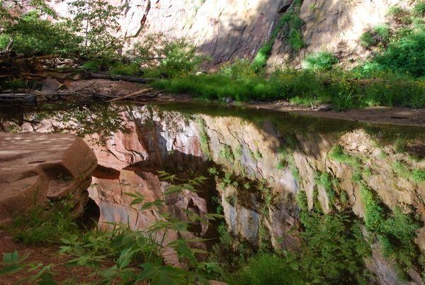 Relective Morning while hiking Westfork Trail thumbnail