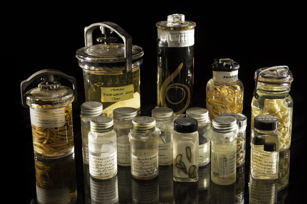 15 antique jars filled with parasites.