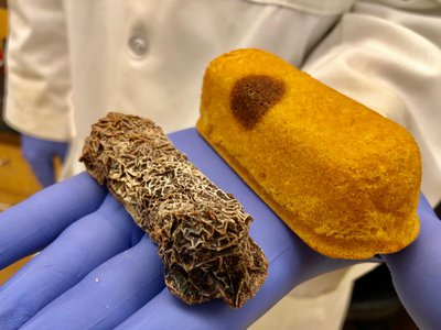Two eight-year-old Twinkies that Pennsylvania man Colin Purrington found in his basement.