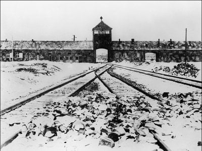 A picture taken in January 1945 depicts the gate and railway of Auschwitz-Birkenau after the camp's liberation by Soviet troops.