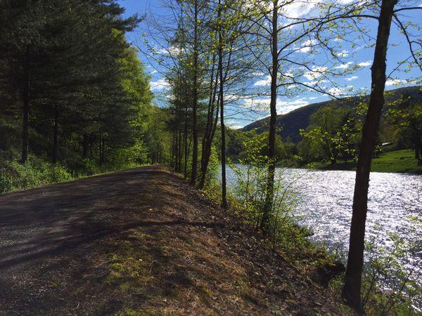 Pine Creek Rail Trail thumbnail