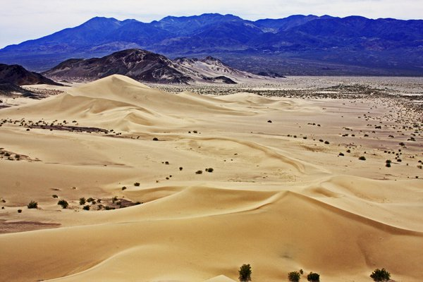 Dunes of Death Valley thumbnail
