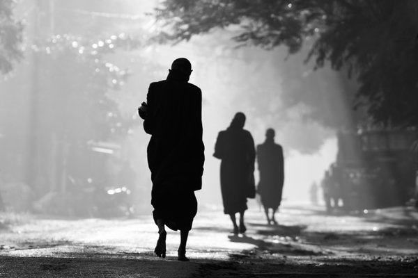 Buddhist monks in the morning thumbnail