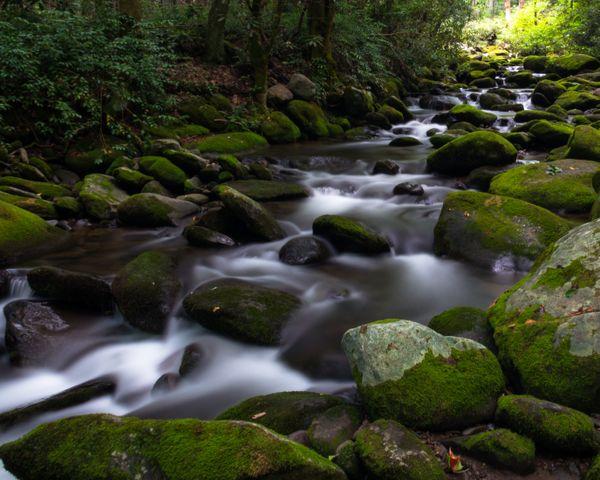 Smoky Mountain Stream thumbnail