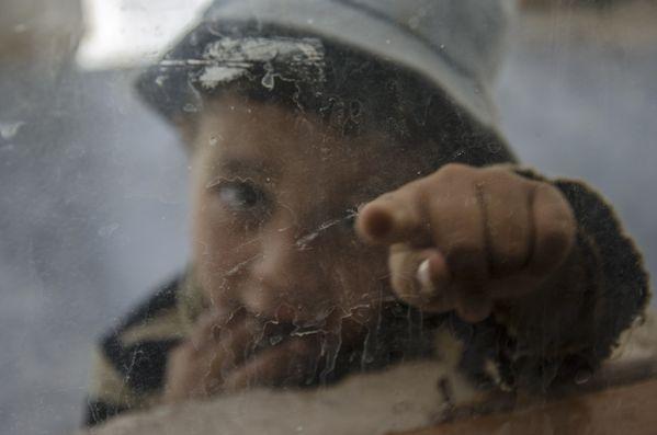 The child through the glass thumbnail