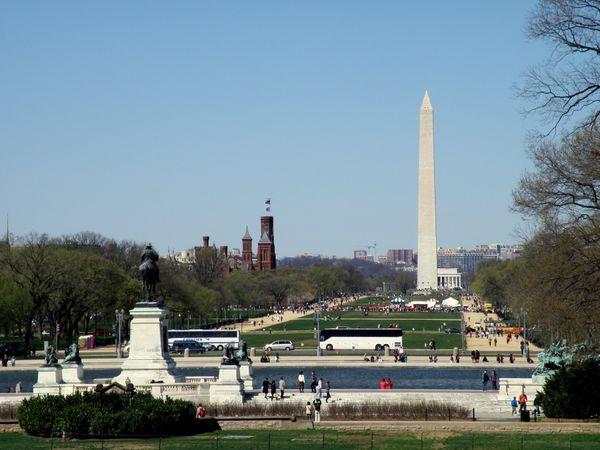 Summertime in Washington DC thumbnail