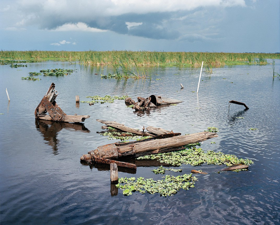 The Strange Beauty at the Edge of the Everglades