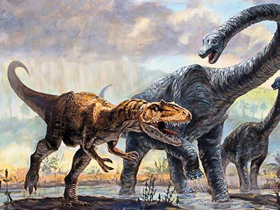 Dinosaurs near Washington, D.C. (long-necked Astrodon johnstoni) left behind a trove of fossils overseen by Matthew Carrano.