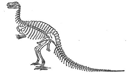 20110520083135megalosaurus-extinct-monsters.jpg