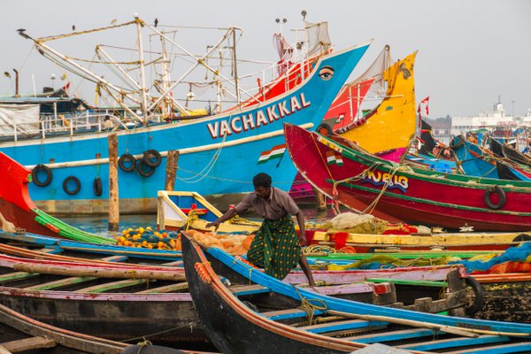 Fisherman among the colorful boats in Cochin, India thumbnail