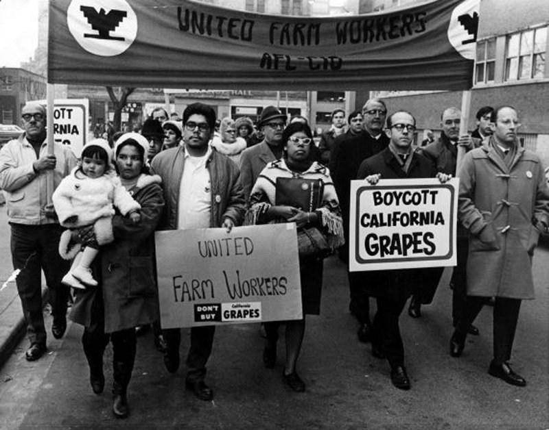 Image of protestors carrying United Farmworkers banner and signs