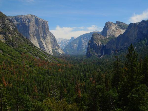 Yosemite Valley (CA) thumbnail