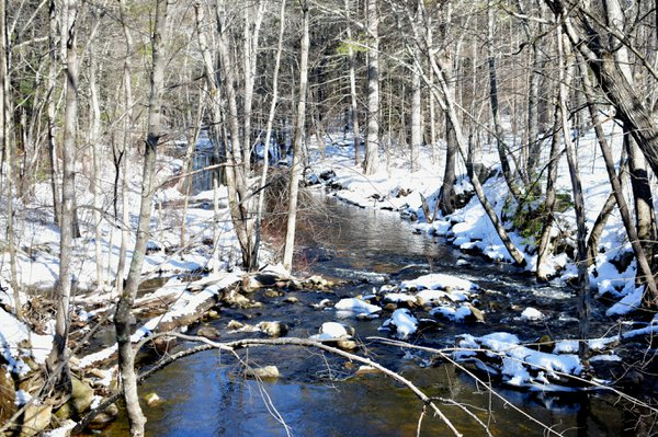 Snowy Brook thumbnail