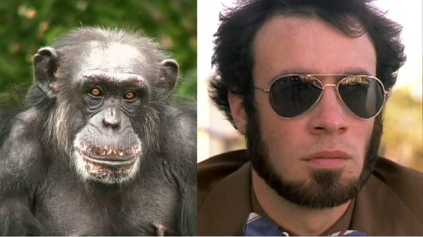 Preview thumbnail for Ask Smithsonian: Can Chimps Be Genetically Engineered to Be Like Humans?