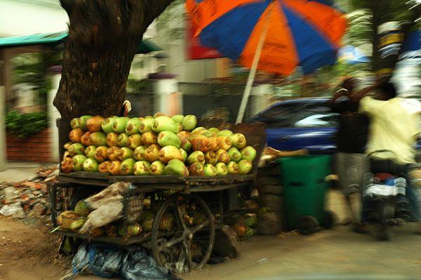 A cartload of coconuts thumbnail