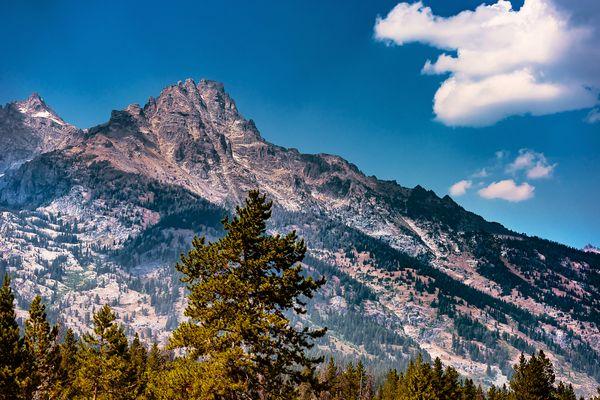 Grand Teton at Moose Junction thumbnail