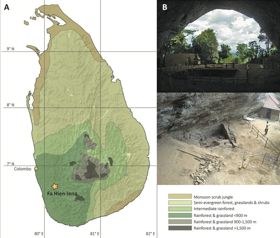 Evidence of Early Bow-and-Arrow Hunting Discovered in Sri Lanka