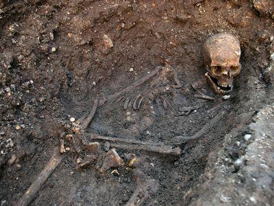 The skeleton of Richard III