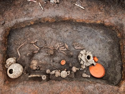 A bent metal rod discovered in the grave was likely a dog toy.
