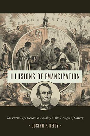 Preview thumbnail for 'Illusions of Emancipation: The Pursuit of Freedom and Equality in the Twilight of Slavery