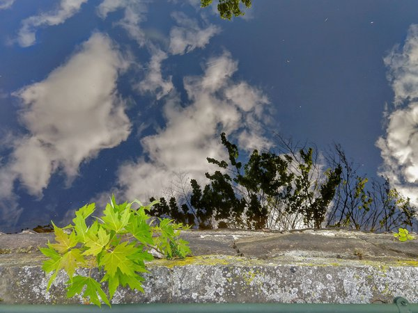 Looking down, Looking up thumbnail