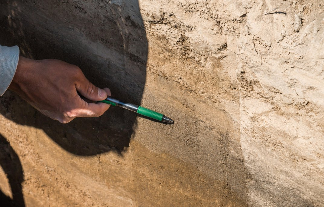 Rare Mammoth Tracks Reveal an Intimate Portrait of Herd Life