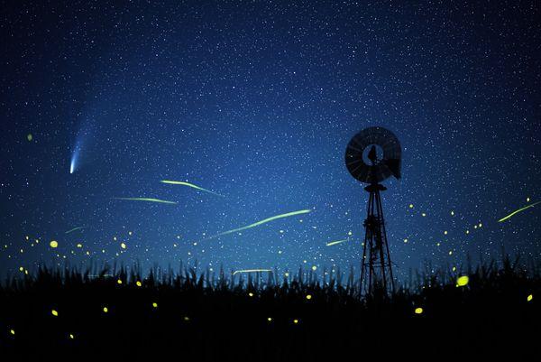 July Comets thumbnail