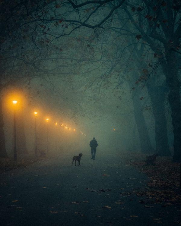 The Lone Wanderer thumbnail