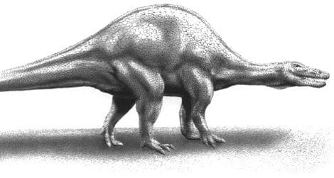 A hump-backed Spinosaurus, restored by R.E. Johnson and from Bailey 1997.