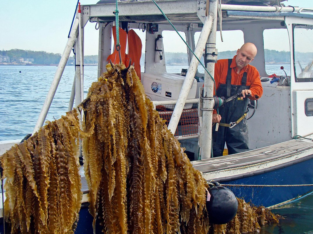 Facing Warming Waters, Fishermen Are Taking Up Ocean Farming
