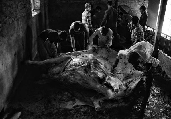 Dirty slaughter thumbnail
